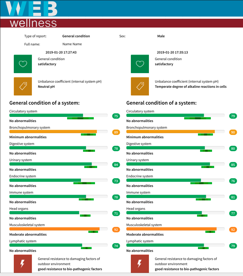 this is a report sample WebWellness